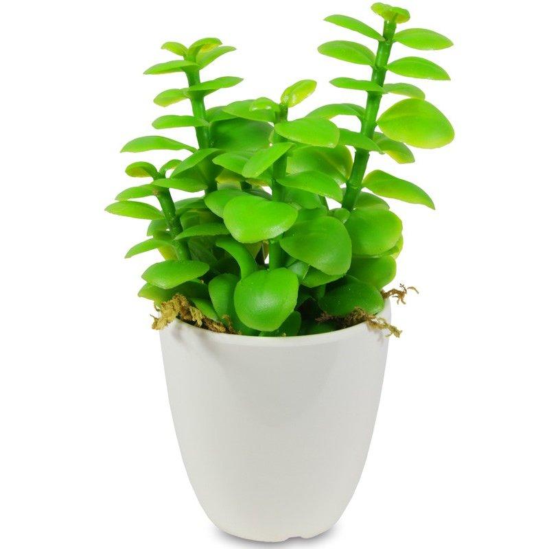 Ozdobna sztuczna roślina succulent 17x11x9cm